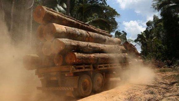 Esta semana la entidad publicó un documento que establece que la legalidad de la madera debe ser acreditada en el proceso de producción y comercialización. (Foto: Reuters)