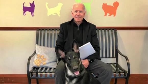 Joe Biden y Major, uno de sus dos perros. (Facebook /Delaware Humane Association)