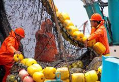 Suspenderán la segunda temporada de pesca de anchoveta desde próxima semana, informó Produce