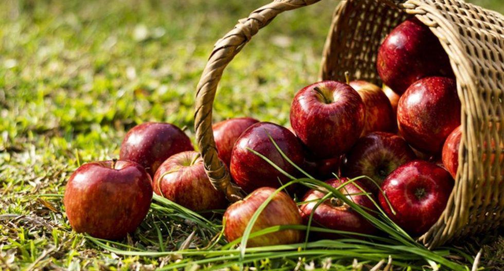 Se estima que existen entre 5.000 y 20.000 variedades/cultivares de manzanas. (Foto:Freepik)