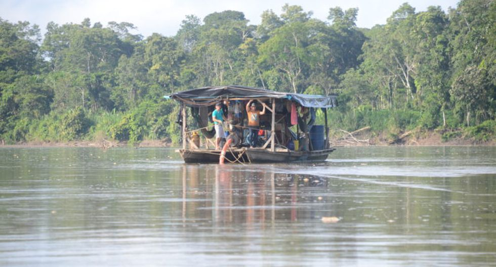Pequedraga en el río Napo.
