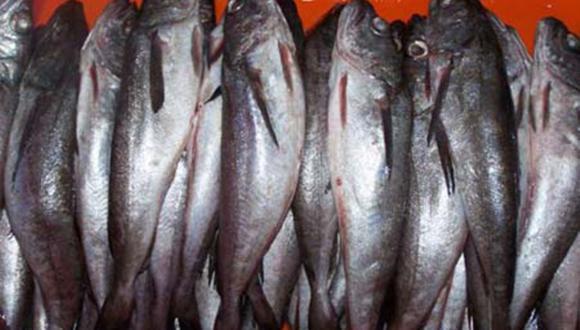 El incumplimiento de lo dispuesto en la Resolución Ministerial sobre la pesca de merluza será sancionado, conforme a lo establecido en el Decreto Ley Nº 25977. (Foto: Andina)