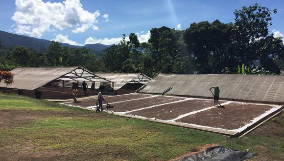 USAID CATALYZE PERU