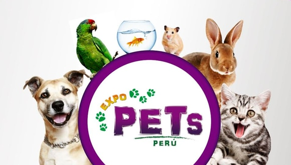 En esta expo habrá servicios gratuitos como limpieza de oídos, aplicación de anti pulgas, desparasitaciones, paticure, clinipets, además de talleres, charlas de especialistas, clases demostrativas y un concurso de mascotas.