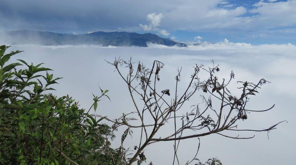 Los colchones de nube son impresionantes. (Foto: Facebook / Refugio de Vida Silvestre Bosques Nublados de Udima)