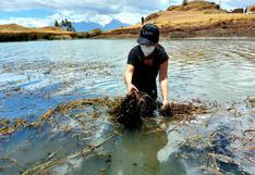 Ancashinos se unen y limpian laguna turística Willcacocha en Huaraz