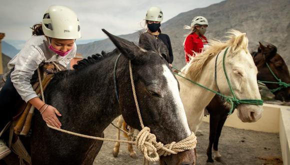Una familia local disfruta de un paseo a caballo que culmina en uno de los miradores del valle. El recorrido suele costar 25 soles. (Foto: Luis Miranda)
