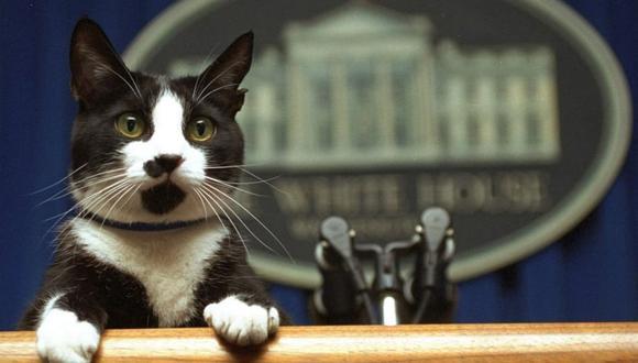 Socks era toda una personalidad en la Casa Blanca. (Foto: La Nación|GDA)