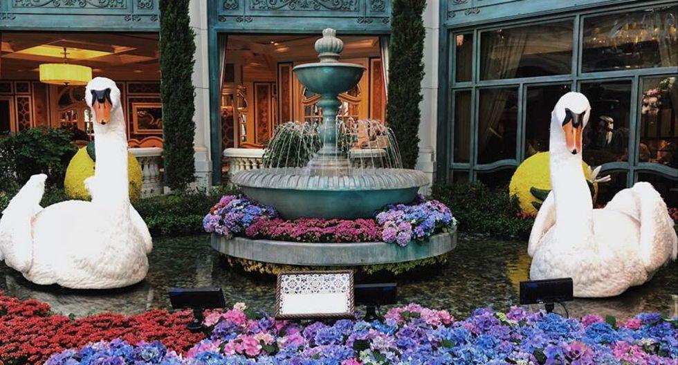 """Bellagio's Conservatory & Botanical Gardens. El equipo del patio de flores para esta fecha se lucirá con sus impresionantes decoraciones hechas con flores y plantas naturales. Además, muy cerca están ubicadas las fuentes de Bellagio, que ya ha programado clásicos navideños como """"Santa Baby"""" y """"Carol of the Bells"""". (Foto: Facebook)"""