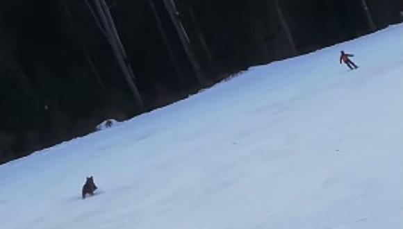 Un oso salvaje a un esquiador por una pista y el momento se vuelve viral. (Foto: David Creța / YouTube)