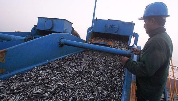 Exportaciones de harina de pescado aumentarían en 12% el 2015