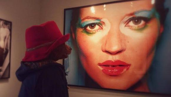Oso Paddington maravillado con museo Mario Testino en Perú
