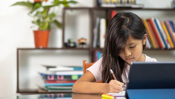 Consultamos con profesionales qué funciono y qué no con el fin de consignar claves para que este año escolar 2021 sea mucho más productivo.