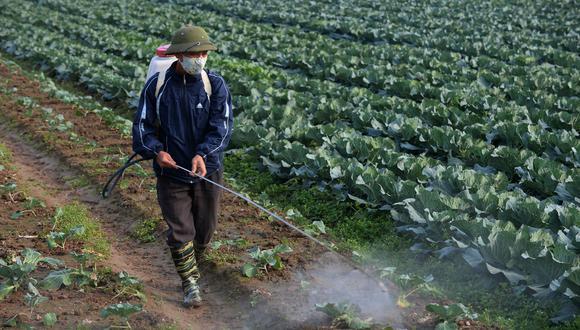 Solo a los herbicidas Paraquat que estén en tránsito al Perú antes de la norma se les permitirá su ingreso al país. (Foto referencial: AFP)