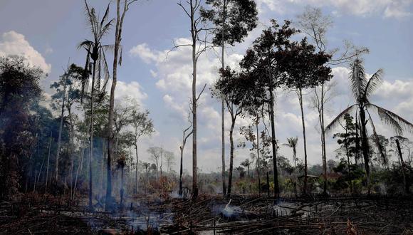 La Amazonía, una de las claves de la estabilidad climática mundial. Foto: AFP