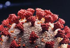 Coronavirus: los virus mortales que desaparecieron sin dejar rastro (y qué lecciones nos dejan para combatir el coronavirus)