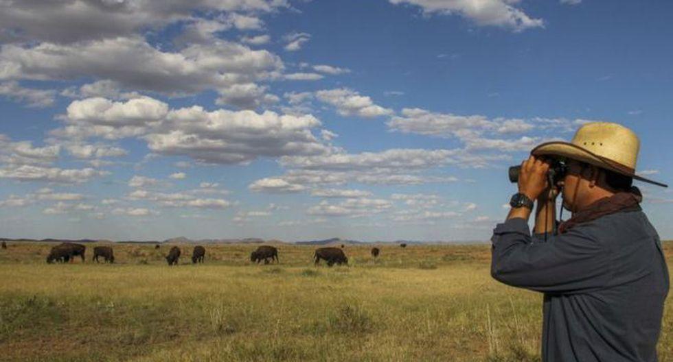 Los 5 principales terratenientes de EE.UU. tienen en conjunto casi 9.000.000 de hectáreas de terrenos. (Foto: AFP, vía BBC Mundo).