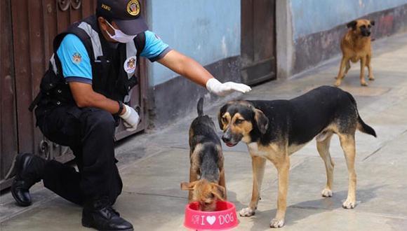 """El segundo vicepresidente del Congreso, Luis Roel Alva, indicó que la ley ayudará a """"frenar el abandono de perros y gatos y que terminan en las calles sometidos a todo tipo de maltratos"""". (Foto: Municipalidad de Magdalena)"""