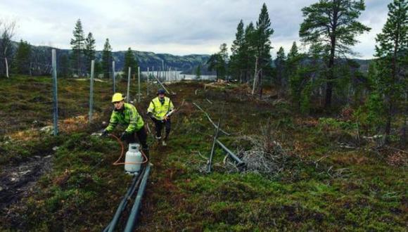 La valla será de 200 metros y cuatro metros de altura en la frontera de Rusia y Noruega. (Foto: BBC)