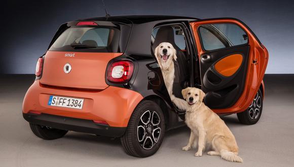 Smart ForFour, el mejor auto para el perro