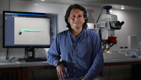El doctor Edward Málaga Trillo considera que se pueden aprovechar los laboratorios de última generación de las universidades peruanas para realizar más diagnósticos de Covid-19. (Foto: Juan Ponce / El Comercio)