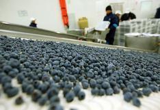 Agroexportaciones crecieron 17% entre enero y agosto