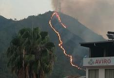 Junín: incendio forestal en Chanchamayo fue extinguido
