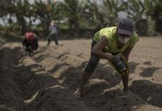 Gobierno anuncia reestructuración del FAE-Agro para flexibilizar créditos a agricultores