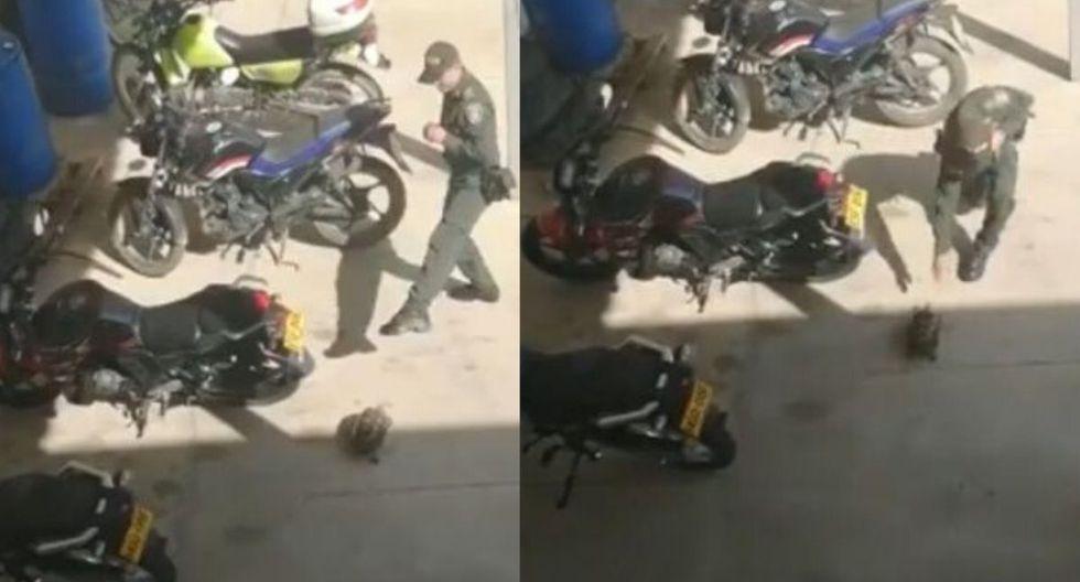 En el video viral de Facebook se puede ver al policía hacer poses de artes marciales frente a la tortuga (Foto: Captura de video)