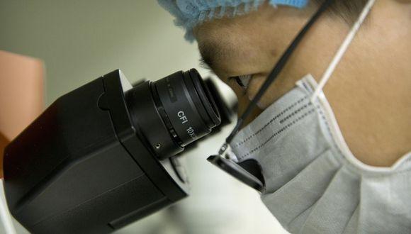 Los científicos planean crear un páncreas bioimpreso en 2 o 3 años. (AP)