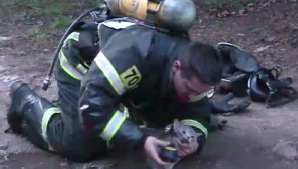 Bombero héroe rescató a un moribundo gato intoxicado por inhalar grandes cantidades de humo durante un incendio en Rusia. (Foto: captura Youtube)