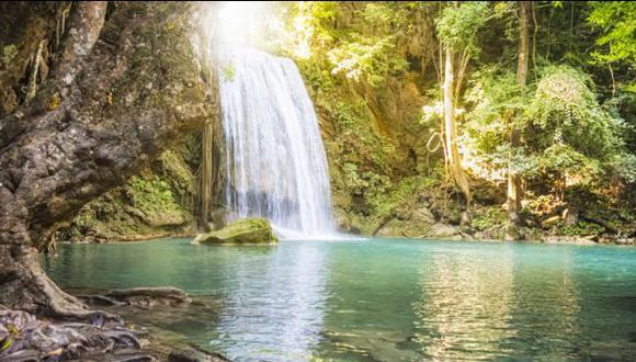 Lanzan plan global para mejorar gestión del agua y bosques