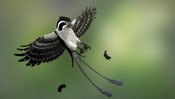 Representación artística del raptor que vivió hace 100 millones de años. (Foto: Han Zhixin)