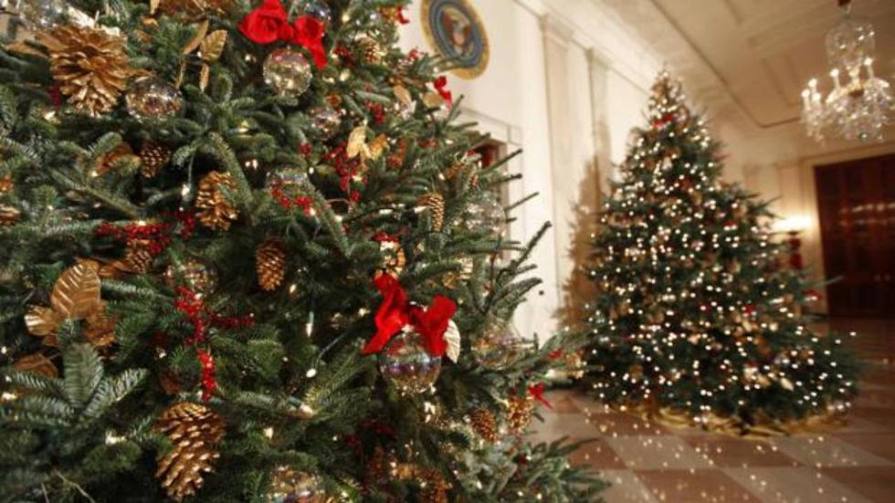 Durante estos días hemos preparado nuestras casas para recibir las fiestas de fin de año. Además del pesebre y de los adornos característicos de Papá Noel o el niño Jesús, uno de los elementos decorativos más importantes en la fiesta decembrina, es el árbol de Navidad.