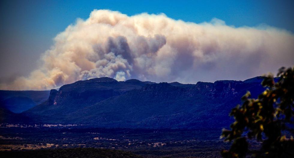 La foto tomada el pasado 7 de noviembre de 2019 muestra un gran incendio forestal que quema 20,000 hectáreas en el Parque Nacional Wollemi, cerca de Lithgow, 100kms al oeste de Sídney. (AFP)