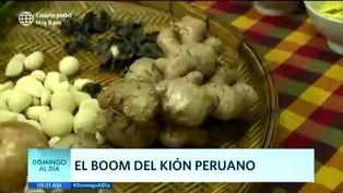 El boom del kión peruano