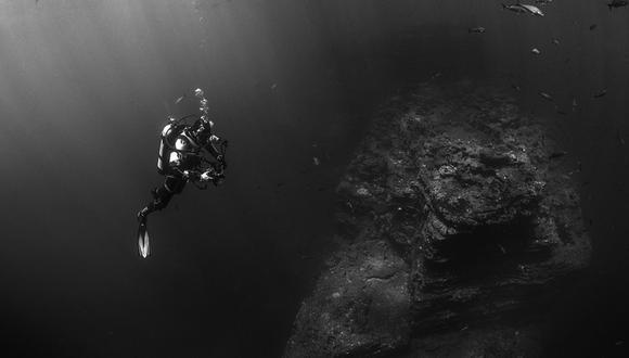 Kristian  Laine logró fotografiar una espectacular criatura en el fondo del mar en Australia. | Foto: Referencial/Pixabay