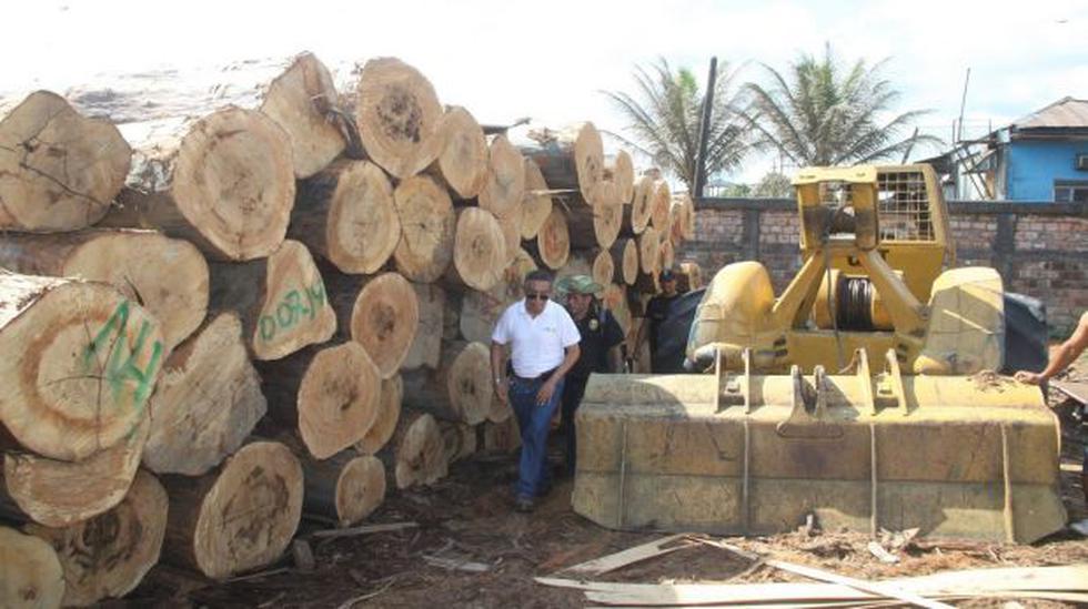 Madera ilegal: inmovilizaron pies tablares por S/. 5 millones - 1