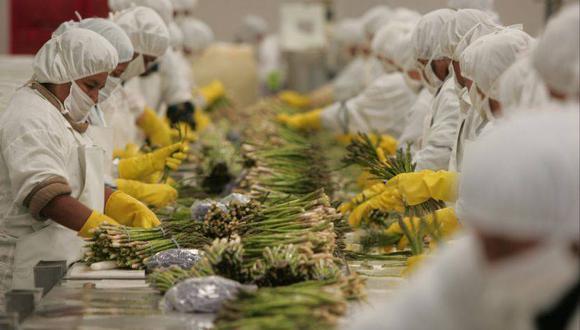 Adex indicó que cayeron todos los subsectores, desde los químicos con -25.6% a la pesca con -60%. (Foto: GEC)