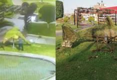 Tacna: desadaptado destruye figuras ornamentales y cámaras lo filman | VIDEO