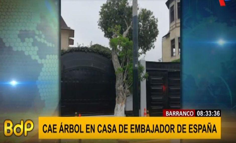 Árbol cayó sobre fachada de la residencia del embajador de España. (Captura: BDP)