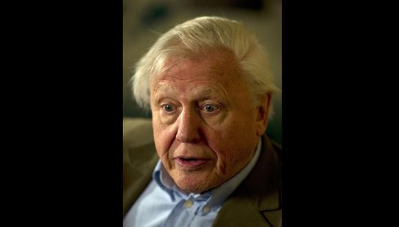 David Attenborough del otro lado del documental