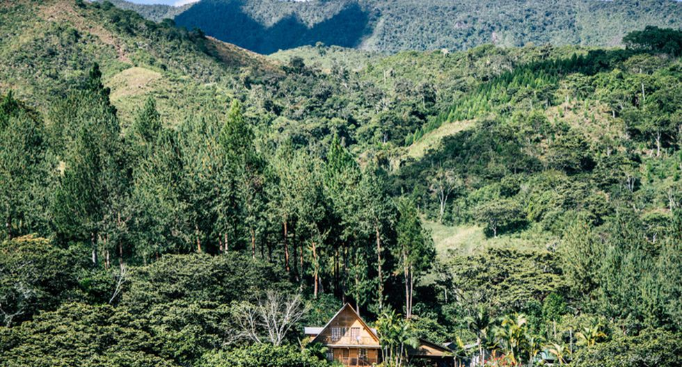 Oxapampa es uno de los destinos más bellos de la selva. Conoce algunos de sus atractivos, los cuales mezclan naturaleza y adrenalina. (Foto: Fernando Criollo / PromPerú)