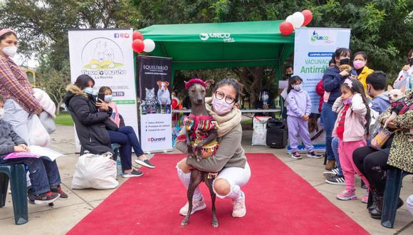 Perritos y gatos podrán ser vacunados con disfraces en campaña 'Vacunapet' este miércoles en Surco | Foto: Municipalidad de Surco