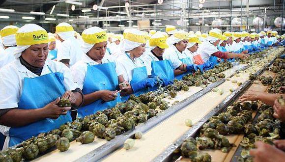 La exportación de alcachofas creció 31% de enero a marzo pasados. (Foto: Archivo El Comercio)