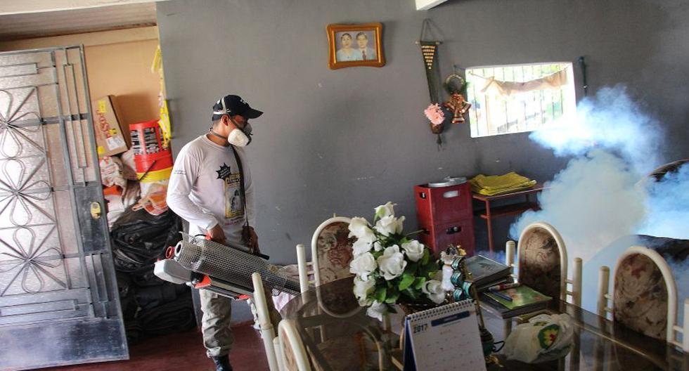 Piura: con 500 máquinas fumigadoras buscan exterminar el dengue - 4