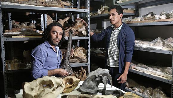 """""""El paleontólogo halla evidencia de evolución en cada resto"""""""