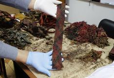Recuperan más de 250 textiles prehispánicos en Pucusana
