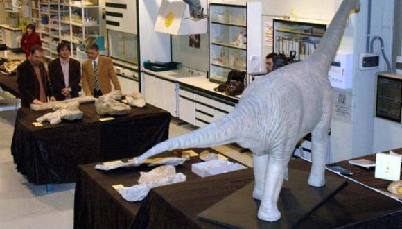 Hallan fósil de un gran dinosaurio de hace 126 millones de años