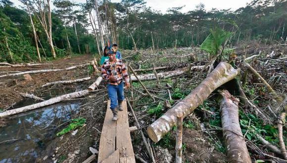 """Pueblos indígenas: """"Candidatos no proponen medidas específicas"""""""